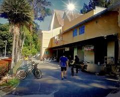 https://foursquare.com/v/frim-kepong/51f5ef30498e76b17de190b3 #trip #travel #holiday #outdoor #green #bicycle #garden #park #Asia #Malaysia #kualalumpur #kepong #frim # # # # # # # # # (soonlung81) Tags: trip travel holiday outdoor green bicycle garden park asia malaysia kualalumpur kepong frim           sky