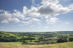 Over Dorset South From Bulbarrow Hill (stevedewey2000) Tags: dorset bulbarrowhill landscape scenery countryside hardycountry sigma2470 32