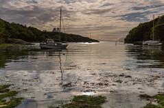 A Moidart Bay .. (Gordie Broon.) Tags: moidart bay yachts glenuig scottishwesternhighlands seascape scotland scenery schottland reflections ecosse paysagemarin caledonia distanteigg calmsea escocia paisaje seaweed light scozia alba lochailort smirisary roshven salen acharacle soundofarisaig gordiebroonphotography canon5dmklll canon1635f4l trees skyreflections geotagged