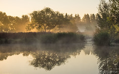 Barcombe at sunrise (Sue MacCallum-Stewart) Tags: red barcombemills sussex earlymorning sunrise mist landscape water reflection
