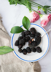 blackberries (beppelena) Tags: foodphotography foodanddrink foodstyling fruit blackberry rawfood elenabottaphotography