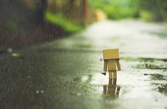 danbo rainy day (DannyBradley) Tags: rain nikon flickr danbo vsco