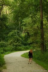 Main Trail (Imagination04) Tags: waterfall glen county forest preserve il illinois dupage lyndie daniels trail trees woods pentaxdfa100mmf28macrowr pentax fa 100mm f28 macro wr
