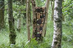 Log Stack (escher is still alive) Tags: landart naturalart ephemeralart environmentalart richardshilling sculpture