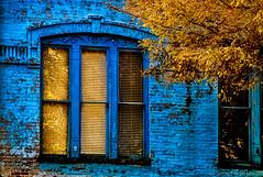 House Of Blue (spanjavan) Tags: hotsprings arkansas unitedstates us windows panes golden leaves fall autumn november blue building