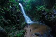 Summer Waterfall (Yohsuke_NIKON_Japan) Tags: 1017mm tokina fisheye unnan waterfall fall summer wide nature     kumomi taki japan sanin shimane green