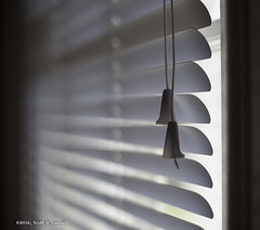 Blind (scottnj) Tags: blind blinds string cord window light white lines scottnj scottodonnellphotography cy365 redditphotoproject reddit365 220366 365project