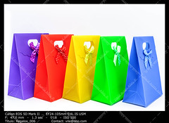 Gift bags (__Viledevil__) Tags: gift bag anniversary birthday blue box carry celebrating celebration celebrations christmas container decoration decorative design gifts green object package paper present purple red ribbon surprise valentine xmas yellow giftbag