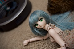 (mauserM712) Tags:     hatsunemiku dollfiedream dds doll d810 2470mm nikon nikkor f28 vrii volks   870 roomba870