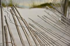 Beach Wave - Explore 8-19-2016 (Terri Toll) Tags: fence beach coast d610 florida graytonbeach hff happyfencefriday nikon nikond610