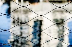 fence to the main (tina djebel) Tags: stadt town city frankfurt westhafen hafen port ports main zaun fence spiegelung spiegelungen reflection abstrakt shapes formen form shape