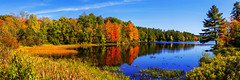 Incredible (Chad Dutson) Tags: incredible chaddutson nature forest lake wilderness wild water light reflection fall autumn season leaf leaves tree trees pine landscape waterscape forestscape panorama maine northeast americana newengland