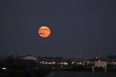 Day 231 of 366 - Urban moonrise (antipodean.light) Tags: boston moonrise redmoon