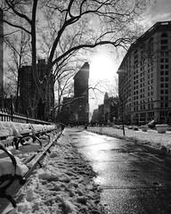 5th Avenue (72) at 25th Street (shooting all the buildings in Manhattan) Tags: 5thavenue newyorkcity newyork 2015 architecture january manhattan ny nyc us flatironbuilding danielburnham longview winter