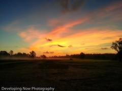 Place of Peace II (nywheels) Tags: louisiana sunrise sky clouds grass trees tractor nature peaceful fog