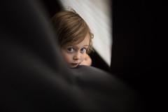 Curtains (trois petits oiseaux) Tags: kids curtains peek eyes