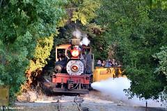 160925_67_felton (lmyers83) Tags: lima shay steam