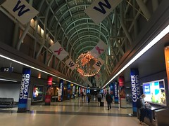 (reezy87) Tags: chicago chicagoohare ohare terminal3 cubs gocubs flythew breastcancer airport american airlines