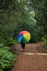 Matheran-5168 (Satish Chelluri) Tags: satishchelluri satishchelluriphotography matheran maharastra umbrella mansoon
