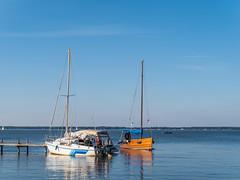 P1040963.jpg (klaus.tontsch) Tags: steinhudermeer steinhude boot boote boats