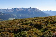 IMGP5459 (Alvier) Tags: schweiz graubünden albulatal surses oberhalbstein ziteil mutten obermutten salouf