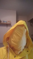 Yellow Enclosure (ac_343) Tags: rainwear raincoat rainsuit raingear pvc shiny yellowdouble sensation enclosed breath