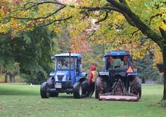 Burnaby city lawn mowing crew take a break (D70) Tags: burnaby city lawn mowing crew break new holland tractors bird seagull men