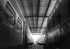 Graveyard train (Mister Blur) Tags: trains museum museo ferrocarriles merida yucatan blackandwhite nikon d7100