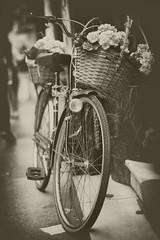 Llvame en tu bicicleta (MAMI EVA) Tags: bicicleta bicycle bike street