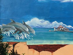 What about a new pier in St Pete? (st_asaph) Tags: pier mural dolphins