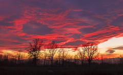 tramonto (Pioppo67) Tags: canon tramonto 60d canon60d