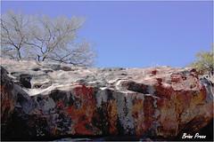 Nama 14 303 (Brian Preen) Tags: rocks granite lichen precambrian namaqualand