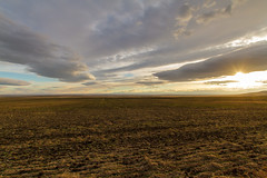 Endless (Blue Trail Photography) Tags: sky cloud sun canada field rural wind farm south southern alberta prairie chinook grassland plain endless