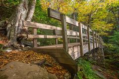 Yep, that bridge again... (jason_frye) Tags: bridge autumn mountains fall hiking blueridgeparkway brp
