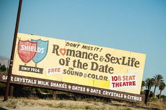 Romance & Sex Life of the Date