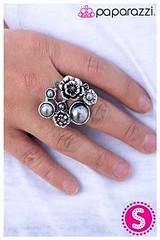 224_ring-silverkit1may-box02