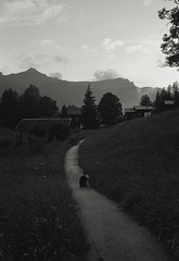 (joelbrendenphotography) Tags: leica switzerland minolta kodak tx trix 400 f2 grindelwald 40mm ch cle leitz rokkor