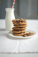 _MG_3880-2 (paulclancy1) Tags: gorillas chocolatechipcookies homemadecookies paulclancyphotography 600lbgorilla