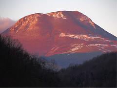 San Vicino (Francesco Ganzetti) Tags: winter mountain snow dawn woods marche