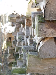 Holz (aw.wahlen) Tags: natur holz wald ofen wrme heizen