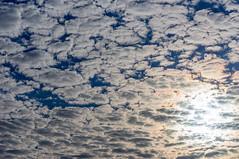 DSC02347.jpg (Images by John B) Tags: sky art clouds buildings cityscapes febuary cityskyline pioneerpark 2015 downtowndallas dallastexas johnbowland wwwjohnbowlandcom