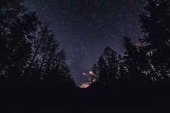 Through the Forest (Martin_Kennedy) Tags: night way stars tokina planet astronomy nightsky milky milkyway tokina1116mm nikond7100