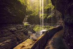 Watkins Glen Gorge (stugallagherphotography) Tags: waterfall gorge fingerlakes watkinsglen