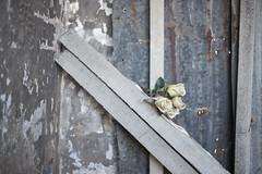 Torpignatta - via del Mandrione (Francesco Collina) Tags: roma del 35mm walking nikon g 14 sigma via di 20mm tor nikkor 18 colori architetture passeggiata d600 pigneto pignattara mandrione