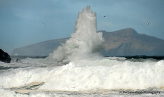 Clogher waves (Barbara Walsh Photography) Tags: ireland wild weather waves power dinglepeninsula clogher