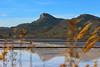 Salinas del Rasall y Cabezo de la Fuente (antoniuts) Tags: nature seagull salinas murcia gaviota calblanque regiondemurcia rasall