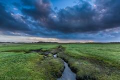 Terscherlling, the Netherlands (Lex Vermeend Photo's) Tags: sunset nature netherlands terschelling sunrise zonsondergang nederland nederlands staatsbosbeheer zonsopkomst boschplaat