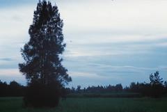 F1010023_lr (chi.ilpleut) Tags: film analog island analogue  expiredfilm kodakfilm     kinmentaiwan kinmen oceanpeopleisland