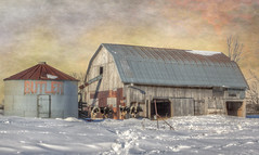 Butler Farm (John Ronson Photography) Tags: butlersfarm farm barn silo cows snow winter textures shadowhousecreations jaijohnson