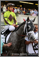 Destin Belmont post (Spruceton Spook) Tags: belmontpark belmontstakes horseracing horses destin
